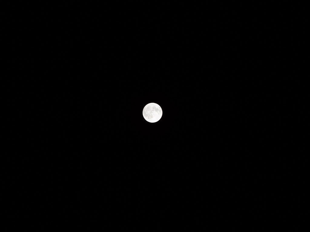 Eine Einzelaufnahme des Mondes aus der Serie beim Fotografieren der Mondfinsternis